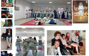 58ebbcdfcd383_synthesepage1judodo.png